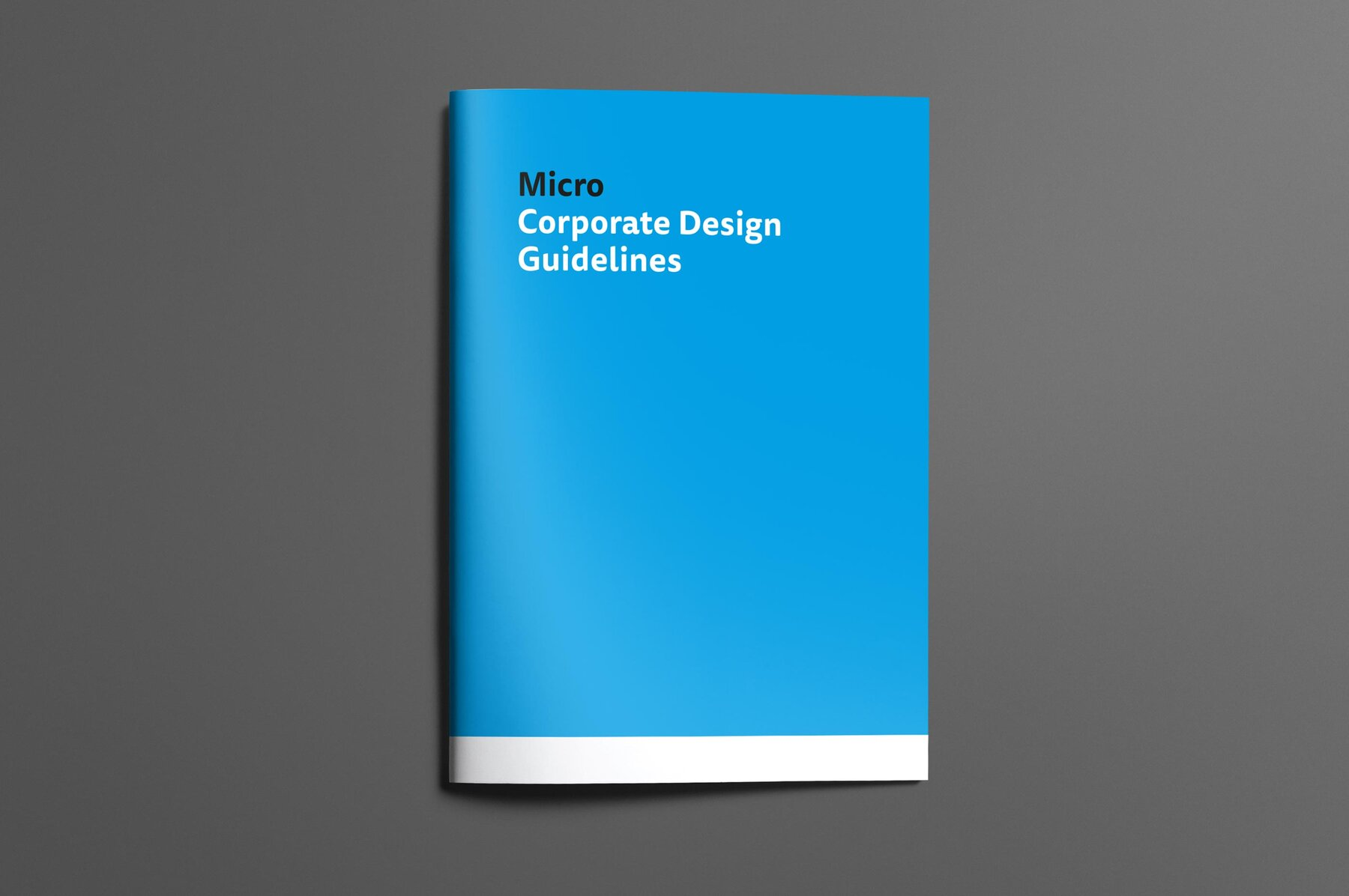 Corporate Design Guidelines Titelseite